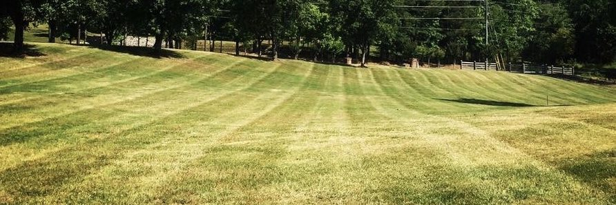 lawn care dalton ga georgia