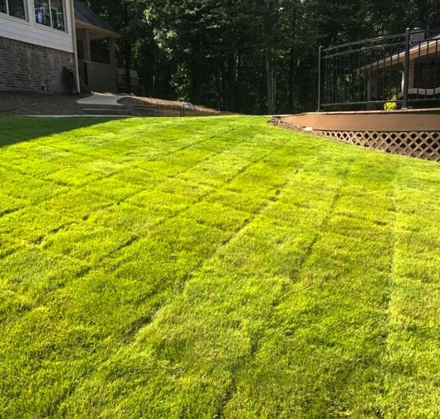 Aerating and overseeding near me