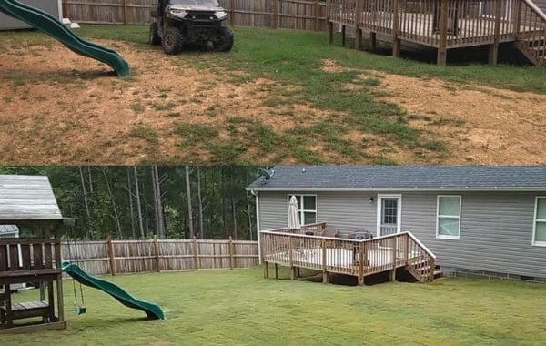 Before and After Sod Installation