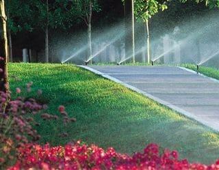 Lawn Sprinklers Water A Park
