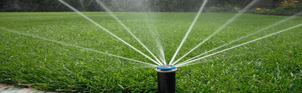 Irrigation Sprinkler Head Spraying Lawn With Water